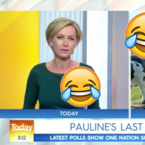 Pauline Hanson Absolutely  Roasts Deb Knight On Today Show