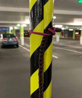 Hey Perth, Lost A Rat's Tail? It's OK, We Know Where It Is
