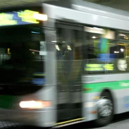 You Don't Need To Photograph Every Perth Bus 'Cause This Guy Already Has