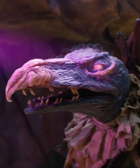Despite Emmy Win, Netflix Cancels 'The Dark Crystal: Age of Resistance'