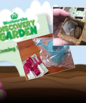 Sneak Peek: Woolies' Discovery Garden Collectables 'Already In Stores'