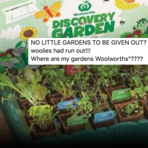 Shopper Fury As Woolies Starts Running Out Of Discovery Garden Collectables
