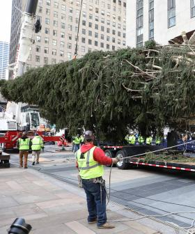 http://Workers%20install%20the%20Rockefeller%20Center%20Christmas%20Tree%20after%20its%20arrival%20at%20Rockefeller%20Plaza%20on%20November%209,%202019.