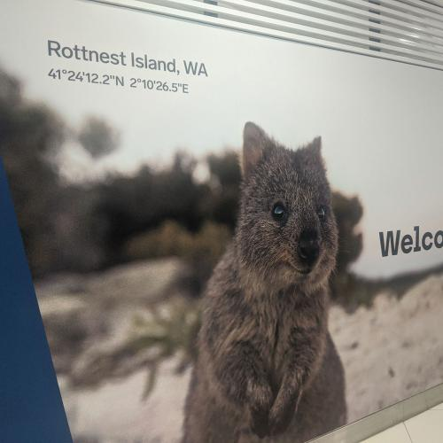 Perth Airport's Response To Rottnest Billboard Blunder Was A Pretty Decent Save