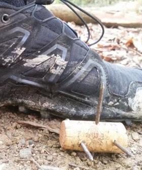 Dangerous Homemade Spikes Discovered On Popular Running Trail