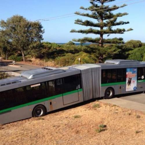 Bendy Bus Gets Bogged For Three Hours Near Rockingham