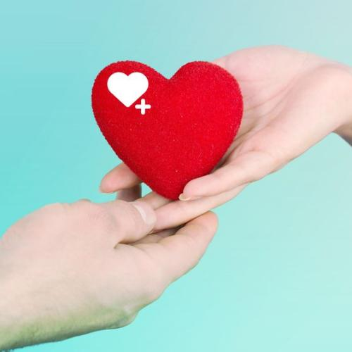 Australia Urgently Needs 14,000 Blood Donors, So Roll Up Your Sleeves If You Can!