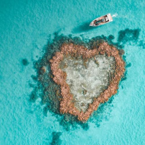 This Heart-Shaped Reef Isn't Just Holiday Inspo, We Want To Actually Send You There