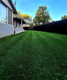 We Asked For Your 'Lawn Porn' And Far Out, The Obsession Is Real!
