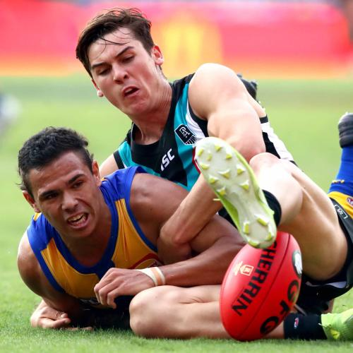 Eagles, Tigers In AFL Struggle Town
