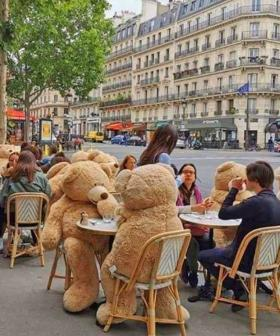 Parisian Cafe Uses Giant Teddy Bears To Enforce COVID-19 Restrictions