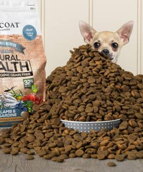 This Pet Food Label Has An Open Casting Call For The Cutest Doggos