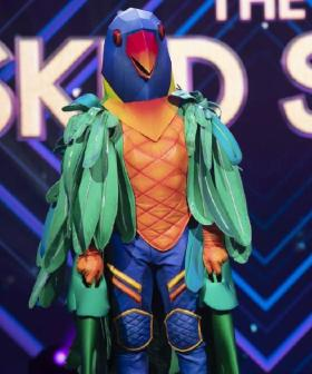 The Brand-Spankin' New Panellist For 'The Masked Singer' Announced!