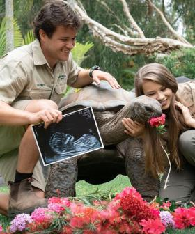 'You Are Our World': Bindi Irwin And Chandler Powell Reveal Gender Of Their Baby