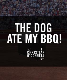 The Dog Ate My BBQ!