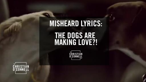 Misheard Lyrics: The Dogs are Making Love?!