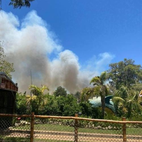 Bushfire Warning Near Adventure World In Bibra Lake