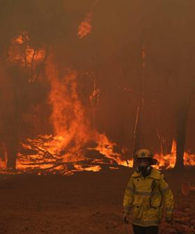 Want To Help Perth's Bushfire Victims? This Is The BEST Way You Can Donate!
