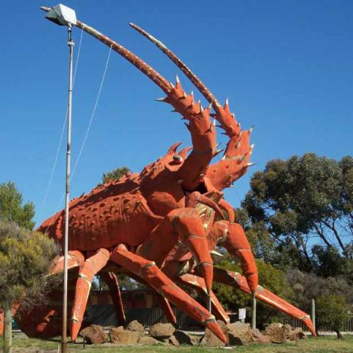 Crayfish Or Lobster? Matt Moran Explains The Difference