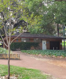 This Storage Shed In Hyde Park Could Be Turned Into Permanent Food Kiosk