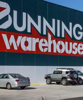 Bunnings Customer Spotted With VERY Bizarre Pet Out For A Shop
