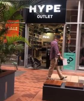 The Mystery Turkey Shopping Around West Perth's Watertown Has Been Solved