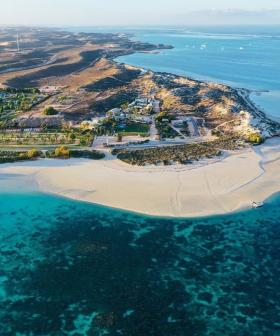 Boy, 10, Flown To Perth Hospital After Shark Bite In Coral Bay