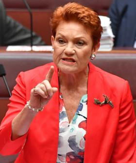 'Please Explain': Pauline Hanson Forgets Her Own Birthday In The Senate