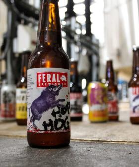 Feral Brewery Calls Last Drinks In The Swan Valley